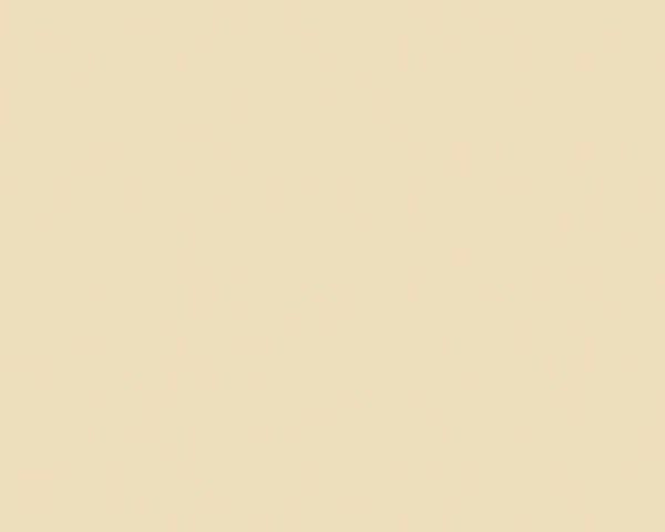 Sierlijke wandtegel in de kleur beige van Dannenberg Tegelwerken