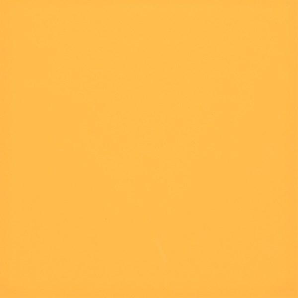 Prachtige wandtegel in de kleur Oranje van Dannenberg Tegelwerken